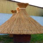 groupe de parasols