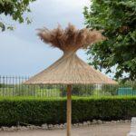 Parasol en roseaux final